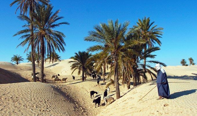 Lugar mais quente do mundo: Kebili, Tunisia