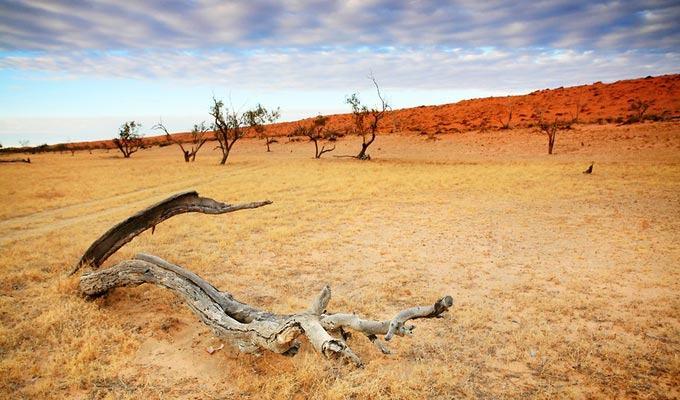 Lugar mais quente do mundo: Queensland, Australia